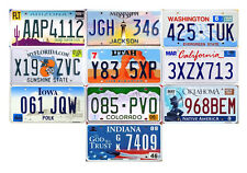 10 USA LICENSE PLATES - UNITED STATES TAG LOT ART CRAFT WALL DECOR MANCAVE (10C)