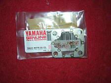 Yamaha TZ250 00-10 Oil Pump Filter Strainer. Genuine Yamaha. New (a11)