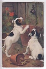 CPA  ANIMAL FANTAISIE -  CHIEN DOG CHIOT JACK RUSSEL ET POTS DE FLEURS 1922 ~C01