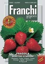 100 Semi/Seeds FRAGOLA 4 Stagioni