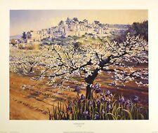 LIONEL AGGETT Cherry Blossom NEW art print Italian SIZE:41cm x 51cm  RARE