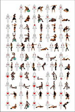 "012 GYM SIZE High Quality Wall Art EXERCISE LAMINATED 14""x21"" Poster"