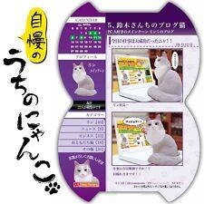 Rare! Re-ment Miniature My Home's Pride Cat No.5 Blog Cat