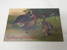 Thanksgiving Day Greeting Card Embossed Turkeys In Wild Mailed 1908