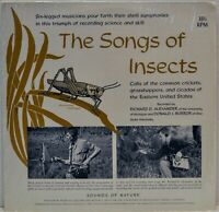 """The Songs of Insects"" Vinyl LP [CH1085]"