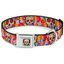 Buckle Down Sugar Skull Starburst Black/multicolor Dog Collar Large 15-26 X 1