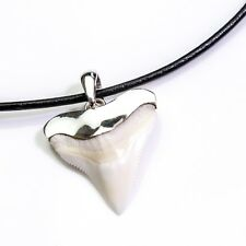 25 -27 mm Bull shark upper tooth sterling silver cap hand crafted leather s12