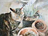 """Original Watercolour Painting Cat """"Flower Pots"""" by Gillian Carolan 38 x 50cm"""