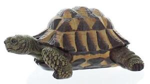 Vivid Arts Natures Friends Baby Petpal Tortoise Indoor/Outdoor Garden Ornament