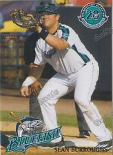 2017 Bridgeport Bluefish Sean Burroughs Atlantic League Independent