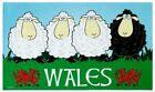 Welsh Tea Towel Wales Red Dragon Black White Sheep Souvenir Gift Novelty 4 Sheep