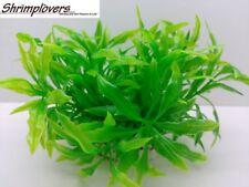 Nano Series, Plastic Aquarium Plants, Beautiful Bush Looking Aquarium Plants