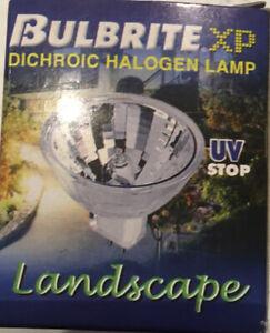 Bulbrite 10MR11NF/6 10-Watt 6-Volt  MR11 Bi-Pin Clear Landscape Dichroic Halogen