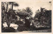 BF36801 las palmas jardin del parque municipal spain
