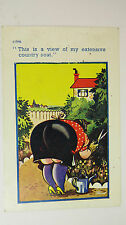 1961 Comic Postcard Allotment Gardening Black Stockings BBW Fat Lady Bottom Bum