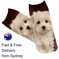 White puppy socks - Maltese breed dog novelty - Cute canine dogs footware sock