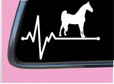 "Morgan Horse Lifeline TP 255 vinyl 8"" Decal Sticker shampoo harness saddle"