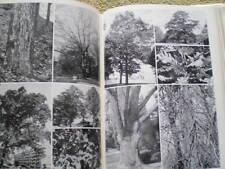 Laubgehölze DDR Buch Bäume Laubbäume Laubholzkunde Gattungen Rinde Äste Früchte