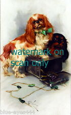 c1900 Wardle~2 Cavalier King Charles Spaniel Dog Dogs~Jewelry Box~New Note Cards