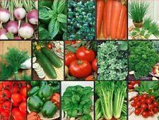 VEGETABLE & HERB Garden Lot ~ 15 Varieties ~ Over 2655 Fresh Seeds