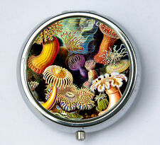 Sea anemone PILL case pillbox pill box holder underwater ocean sea nature