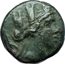 APAMEIA in PHRYGIA 88BC Authentic Ancient Greek Coin TYCHE MARSYAS Flutes i66172