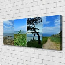 Leinwand-Bilder Wandbild Canvas Kunstdruck 125x50 Strand Baum Fußpfad Landschaft