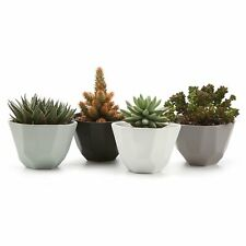 "5"" Ceramic Geometric Semi Luster Surface Set Succulent Plant Pot Planter Pack 4"
