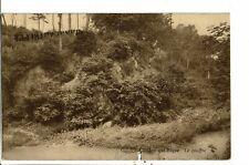 CPA Carte Postale-Belgique- Honnelles-Roisin Le caillou qui bique-Le gouffre1931