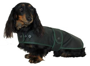 Water and Windproof Dachshund Hunter Coat  tailored for the Dachshunds