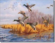Vintage Replica Tin Metal Sign Ducks Unlimited Mallard Logo hunting fishing 1037