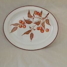 "MIDWINTER STONEHENGE WILD CHERRY 12"" OVAL PLATTER EXCELLENT USED CONDITION"