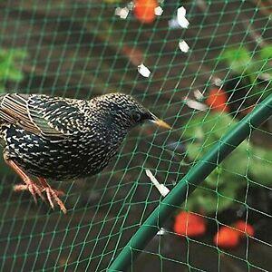 ALL PURPOSE GARDEN NETTING 6M x 1.5M Net Protect Bird Fruit Pond Veg Plant Mesh