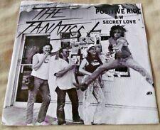 The Fanatics - Positive Ride/Secret Love 45 w/sleeve private press hard rock NM