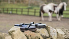 HAAS Brush set - Grey/White/Coloured Horse Pack by Polished Ponies Ltd