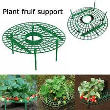 STRAWBERRY Stand Balcone supporto di ortaggi piante rampicanti sostegni GIARDINAGGIO Stand