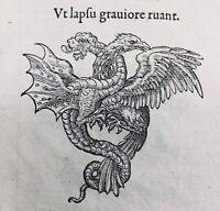 Dragon 1557 Aigle Orazio Farnèse Rarissime Gravure Claude Paradin Italie