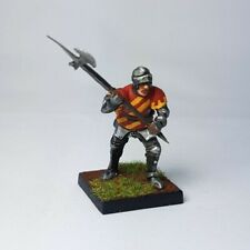Medieval foot knight, Painted 28mm D&D, SAGA, wargames