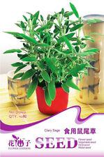 1 Pack 10 Edible Clary Sage Seeds Salvia Officinalis D040