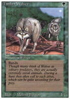 1x Timber Wolves MTG 3rd Edition / Revised NM Magic Regular