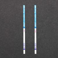 10x bande de test de grossesse HCG urine testeur pour maison