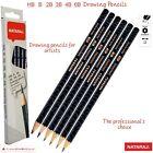 Nataraj Professional Artist 6 X Hb B 2b 3b 4b 6b Grade Drawing Pencils Art Craft