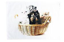 La cesta de gatitos mullido algodón Grande Toalla de té por la mitad de un burro