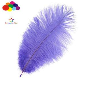 100 pcs Ostrich Feathers Femina 15-20 cm/6-8in wedding centerpieces decor crafts