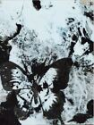Amazing Mixed Art Media on polyvinyl chloride, Painting Butterfly