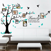 Family Tree Bird Photo Frame Wall Stickers-Quotes-ArtWall Decals Home Decoration
