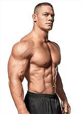 John Cena Cartel muscular, campeón WWE Wrestling leyenda, Free P + P, elija su tamaño