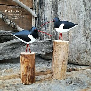 Pair of Individual Oystercatchers on Wood Nautical Decorations - Shoeless Joe