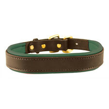 Perri's Padded Dog Collar - Hunter Green - Different Sizes - SALE!