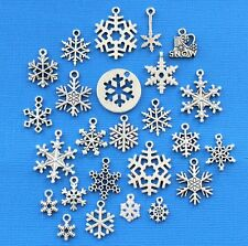 Snowflake Deluxe Charm Collection 25 Silver Tone Charms FREE Shipping E50